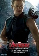 Avengers Age of Ultron deutsches Charakterposter Hawkeye