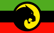Flag of Wakanda