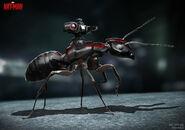Ant-Man - Konzeptzeichnung 45