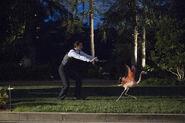 Agent Carter Staffel 2 Bild 30