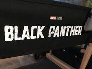 Black Panther Stuhlfoto