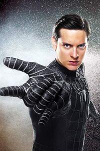 Spider-Man Tobey schwarz