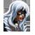 Gata Negra icono 1