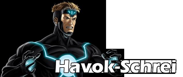 Havok Banner 2