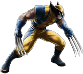 Wolverine-Yellow and Blue