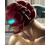 SC-Gamma Icon