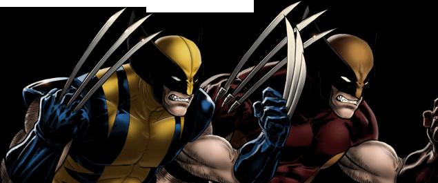 Wolverine Banner Multi