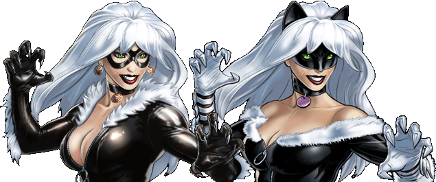Black Cat Banner Multi