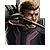 Hawkeye Icon 4