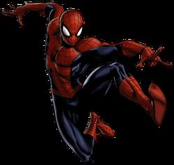 Spider-Man Portrait Art