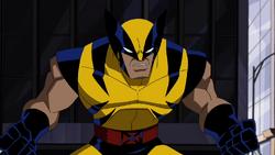 Wolverine proposal one