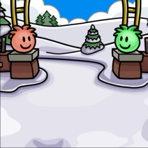 DécorParcPuffle