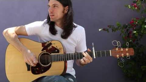 In the Curve — Seth Avett