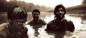 Avetts mud
