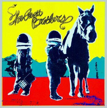 True Sadness 2016 Album The Avett Brothers Wiki