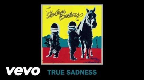 """True Sadness"" — The Avett Brothers — Album version"