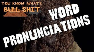 You Know What's Bullshit!? - Word Pronunciations