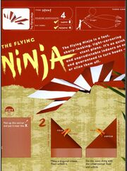 Flying ninja 2
