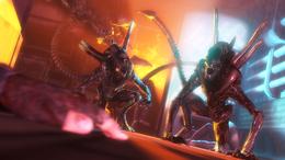 Xenos-Warriors