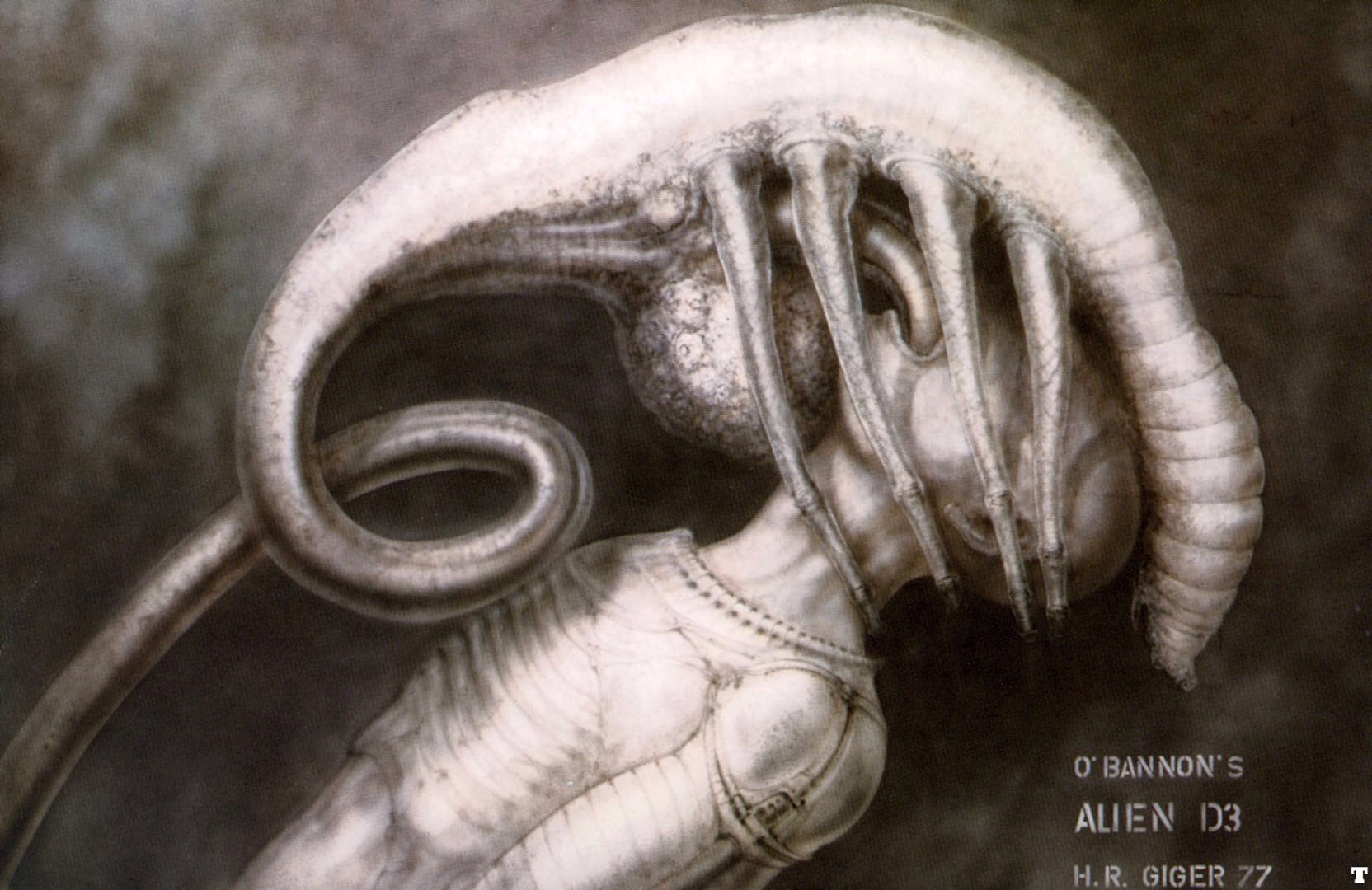 Facehugger Xenopedia Fandom Powered By Wikia Chicken Leg Dissection Diagram For Pinterest Giger019