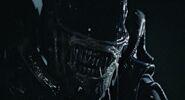 Aliens-listing