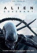Covenant DVD