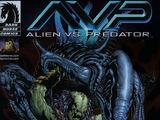 Alien vs. Predator: Whoever Wins...We Lose