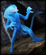 BluexenoK