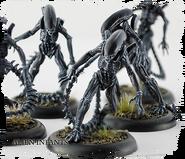 Alien Infants