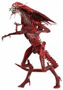 1300x-Red Queen Genocide1