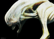 Prometheus Concept Art Ivan Manzella 01a