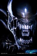 Alien vs predator ver1