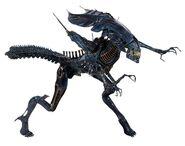 1300x-Alien Queen1