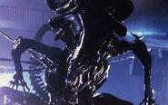 Aliens1112