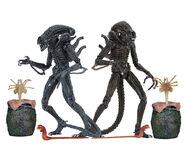 51644-Ultimate-Alien-Warriors-590w