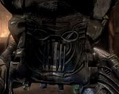 Lord's Bio-Mask (interior)