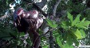 Predator (1987)-image-491808