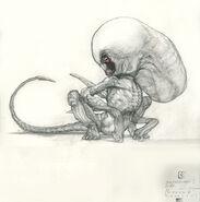 Stephane-levallois-paradise-babyneomorph-study-opening-mouth-p2-web