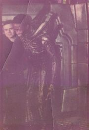 BTS with Badejo and Giger
