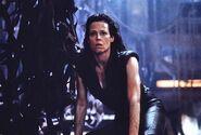 Ripley ohcrap