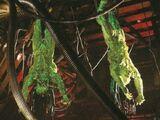 Aliens vs. Predator: Requiem deleted scenes