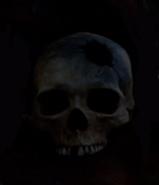 Predator-1987-skulls