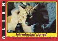 Jones 15