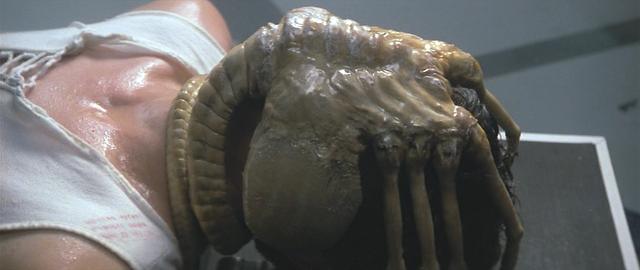 Fichier:Alien-The Facehugger.png