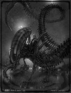 Alien5Xeno