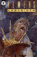 367329-21239-128540-1-aliens-labyrinth
