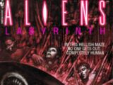 Aliens: Labyrinth (novel)