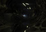 Isolation Hive interior 2