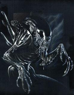 Alien by Buchemi