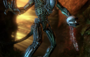Predalien removing spine-1-